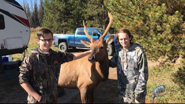 Friendly elk hangs out with hunters for 5 days in Bear Valley