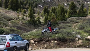 'We were sort of stunned': 2 snowmobiles spotted near trail with no snow