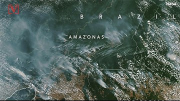 Amazon Rain Forest Fires Can Be Seen From Space