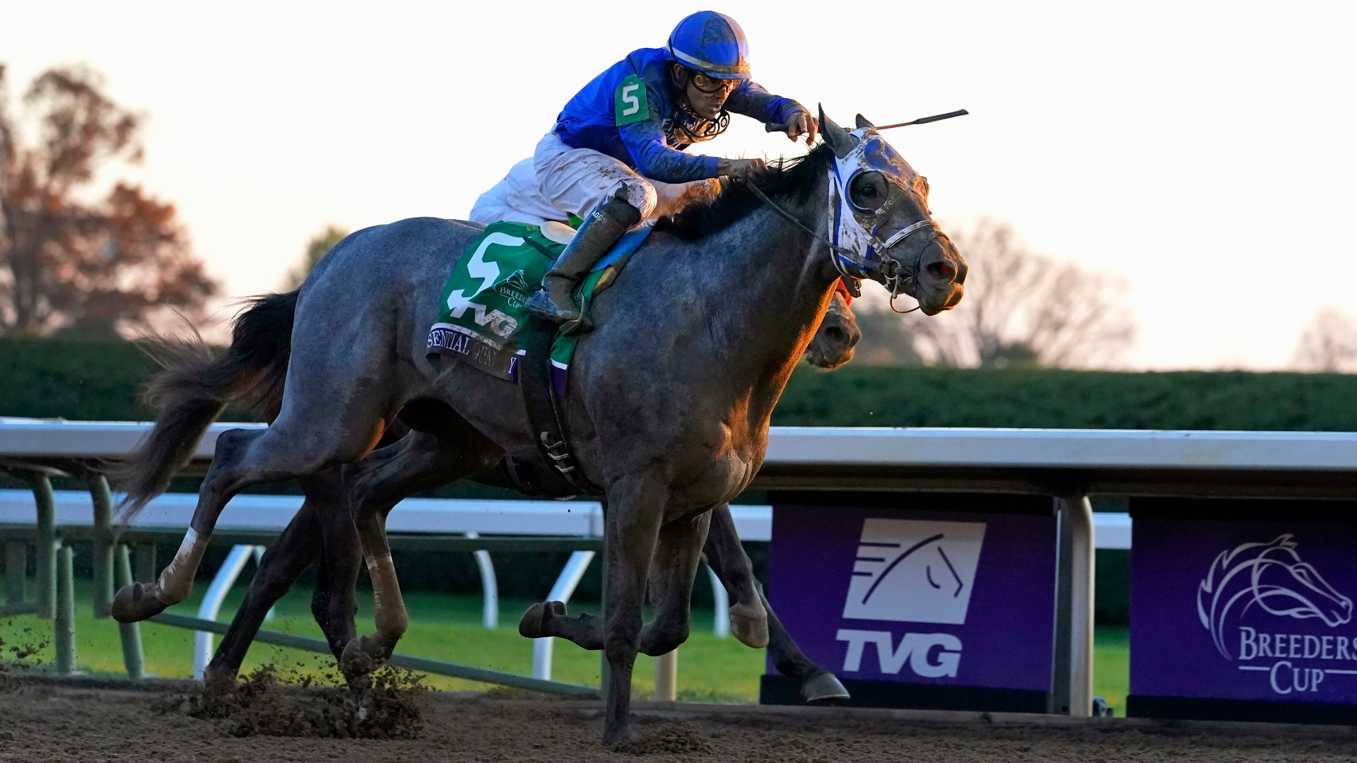 Trainer of Derby favorite Essential Quality previews the race
